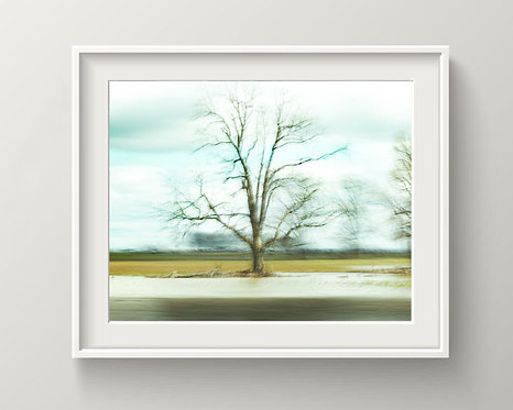 Fine Art Abstract - Photography - Square - Digital Download