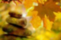 automne zen.jpg