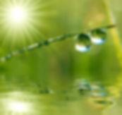 zen-druppels1.jpg