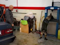 Zip searching a Garage