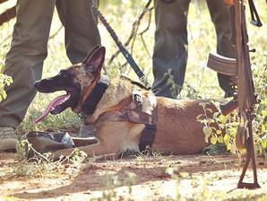 Justice & Shetani operational training in Zimbabwe