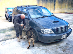 Zip conducting Vehicle search