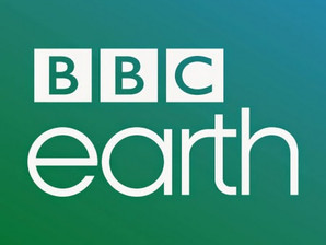 ASA features in BBC Earth article 'Meet the dogs saving endangered species'