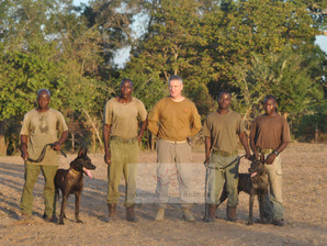 A.S.A trains Tracker Dog unit in Chuilexi Conservancy, Mozambique