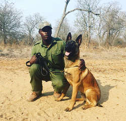 Justice with his new handler
