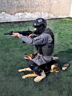 Xzarto learning tactical movement