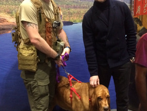 Ronan Keating & John Craven show their support for A.S.A & Anti-Poaching Dogs