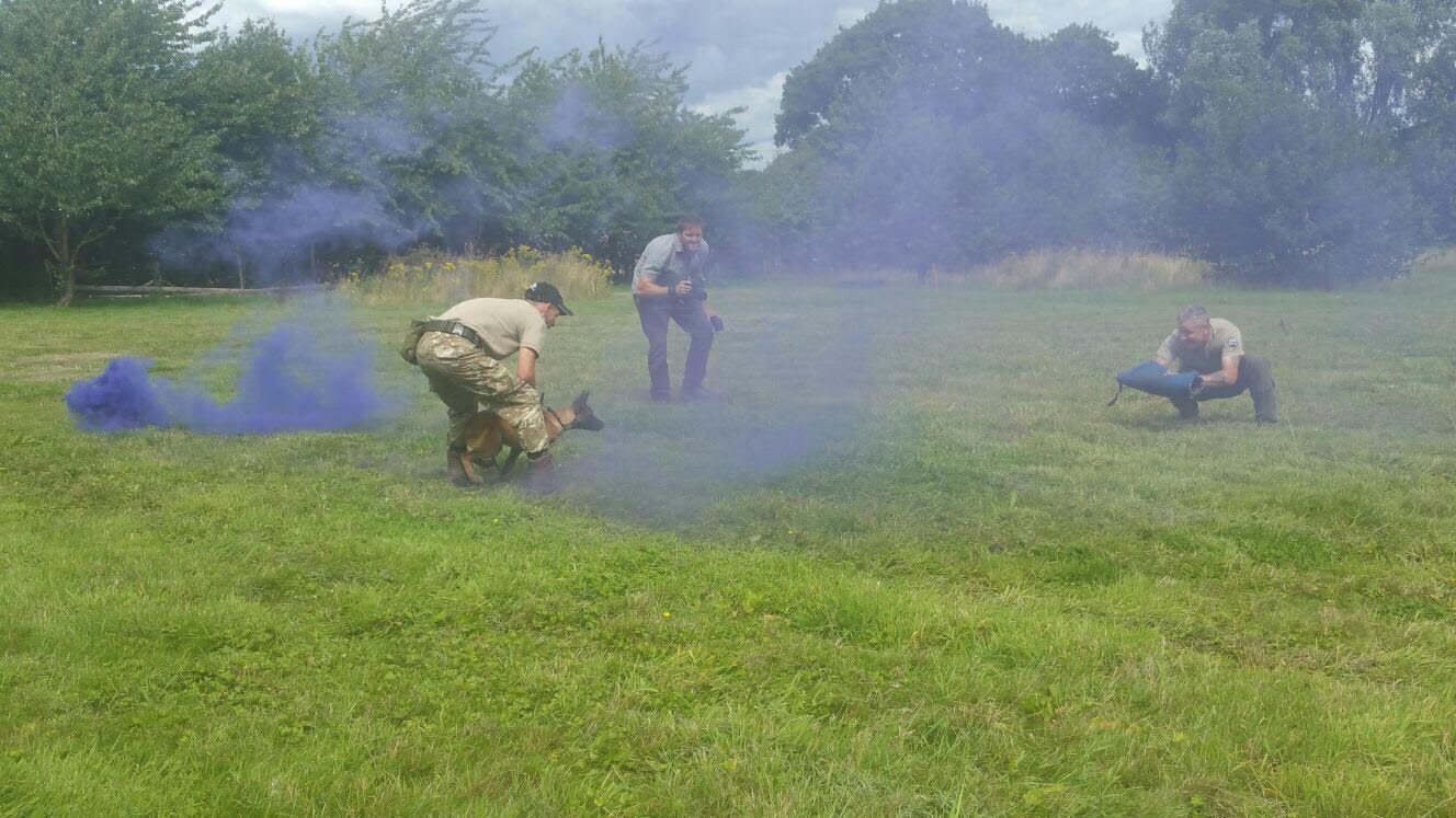 Smoke grenade training