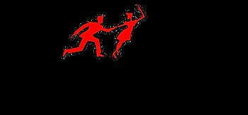 Logo Officiel LSDC.png