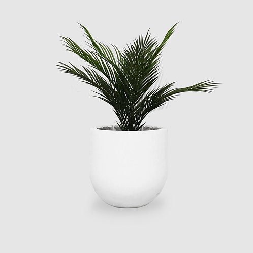 Mood Pots - White Out - Medium