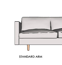 STANDARD ARM.jpg