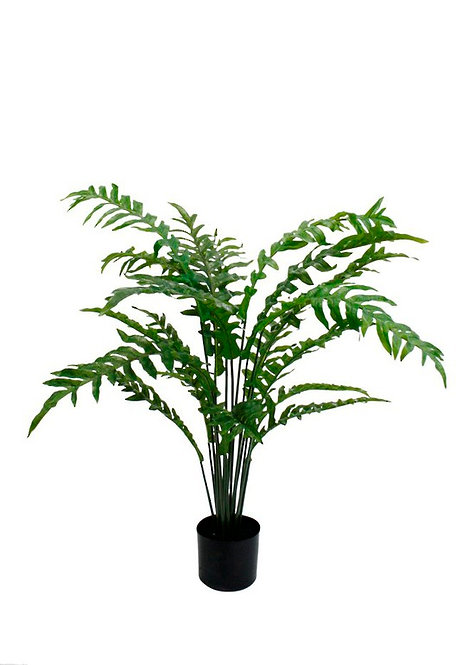 Potted Fern Large