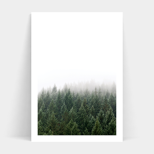 A3 Print and Frame - Forest - EX DISPLAY