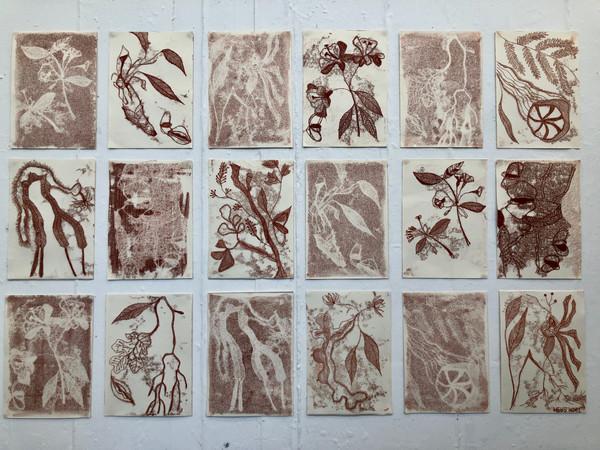 'Ocean Flowers Monoprint Series'