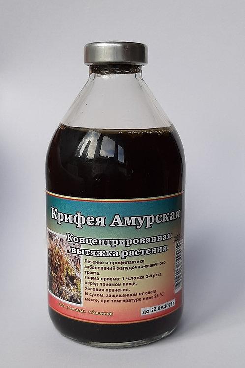 Крифея Амурская