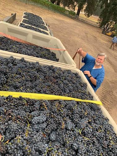 Golden Star Vineyards & Winery
