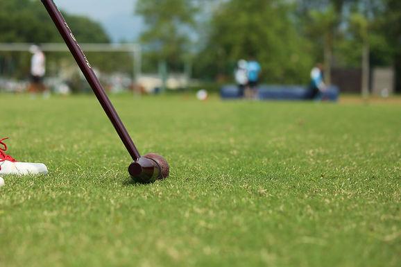 第1屆伊朗木球公開賽2018、第17屆日本木球公開賽2018、中國國際木球公開賽2018 及第5屆蒙古木球公開賽2018 現已接受報名!