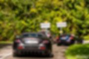 Chantilly Arts & Elegance - Mercedes Mclaren SLR Roadster