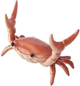 Crab_but_excite.jpg