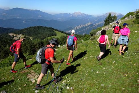 Sortides botàniques del Grup de Recerca Botànica de Muntanya i Natura