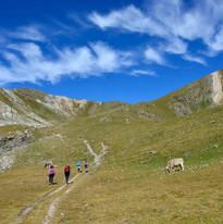Travessa vall de Carançà, Projecte Pica d'Estats 2021