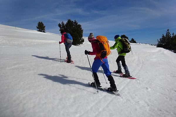 Jornada tècnica de progressió amb raquetes de neu