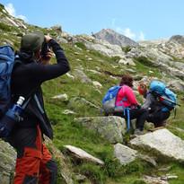 Fotografiant l'isard a la vall de Carançà, Projecte Pica d'Estats 2021