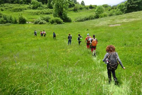 Sortida botànica del Grup de Recerca Botànica de Muntanya i Natura