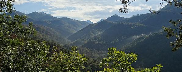 Excursions guiades a peu al Parc del Castell de Montesquiu