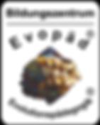 BZ-Logo-Web.png