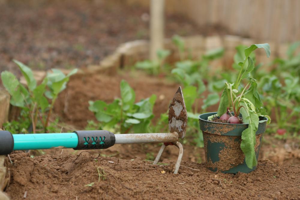 Trucs de jardinage