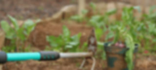 BIOGROS Kokoserde - Home Farming Solutions - Balkon- und Terrassengestaltung - Stadtgarten - Urban Gardening