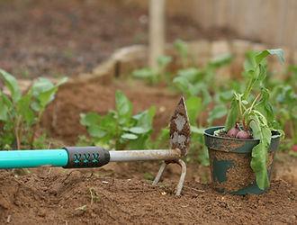 Rake jardinage