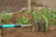 Gardening Rake