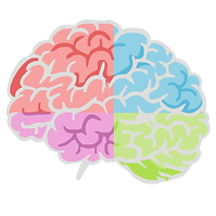 Coloredbrain.png