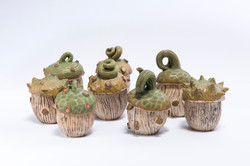 Bev Seth 3 Forest Floor jars