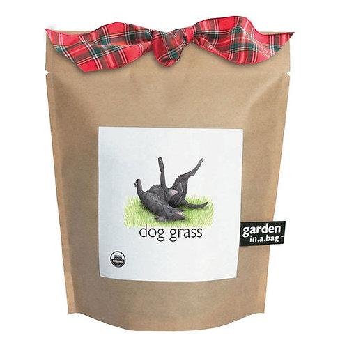 Garden-In-A-Bag Dog Grass