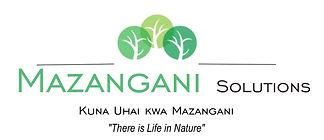 Mazangani solutions
