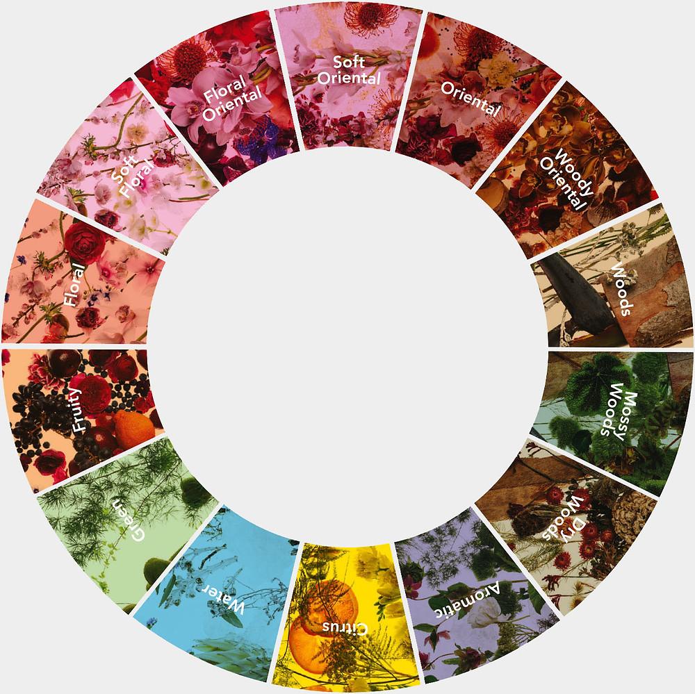 Fragrance of the World Fragrance Wheel