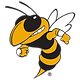 Georgia Tech Yellow Jacket
