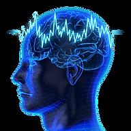 neural-oscillation-brain-fingerprinting-