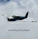 On a wing and a prayer.png