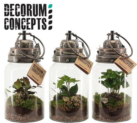 Decorum Concepts Stormlamp