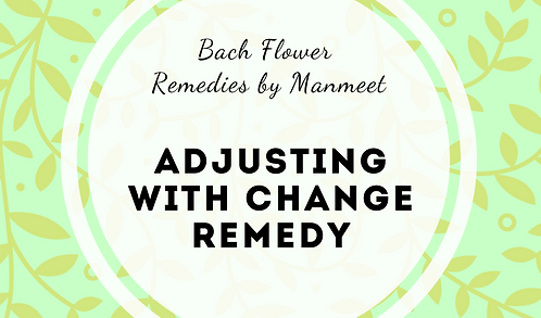 Adjusting with Change Remedy