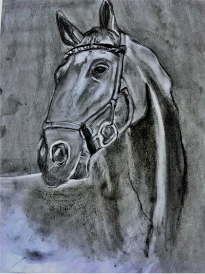 """Horse"""