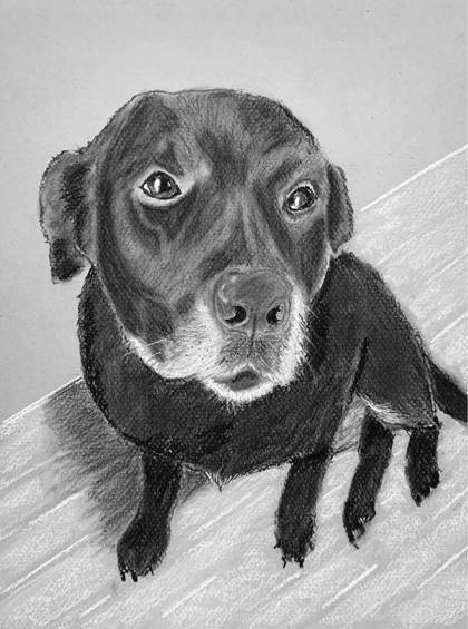 """""""Portrait of Lucky"""""""