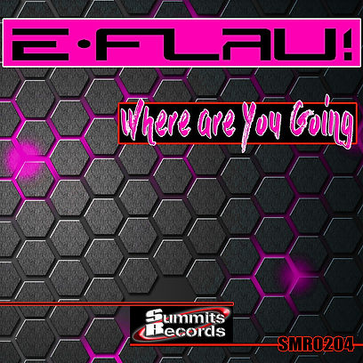 Dj E Flau -Where are You Going 1440x1440