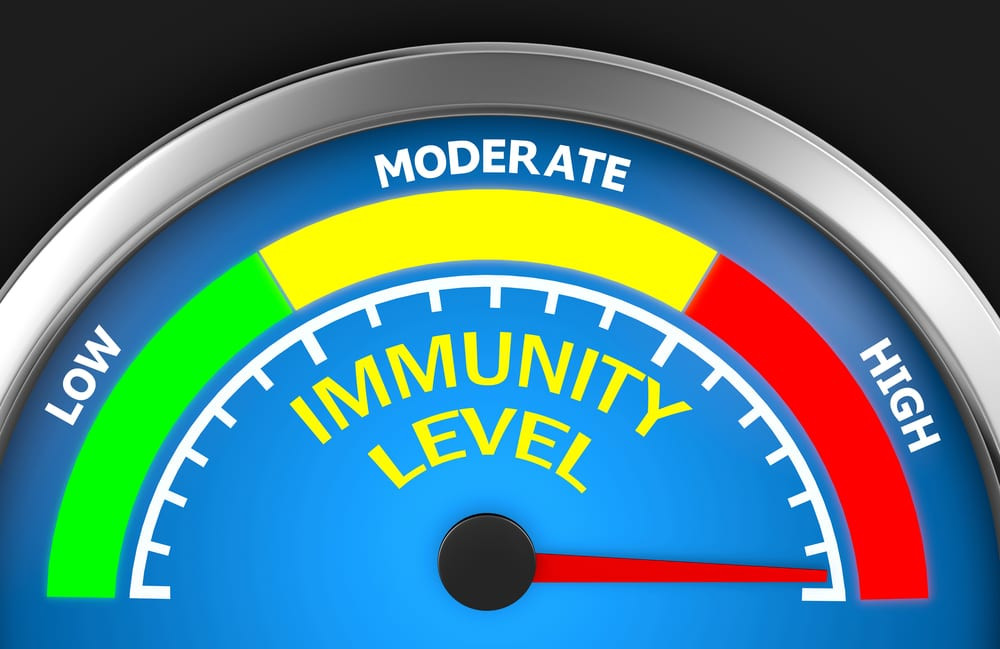 Immunity level high with chiropractic adjustments