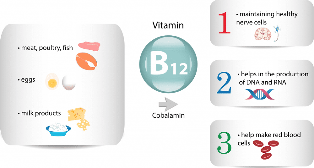Eggs and B12