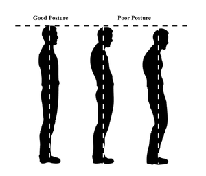 Good to poor posture for spine